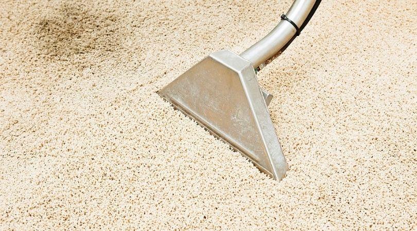 Carpet Stain Cleaning San Antonio