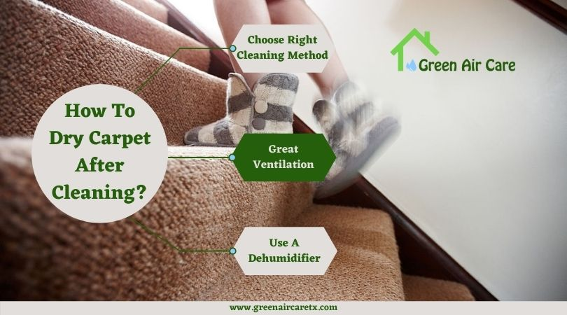 How To Dry Carpet After Cleaning?