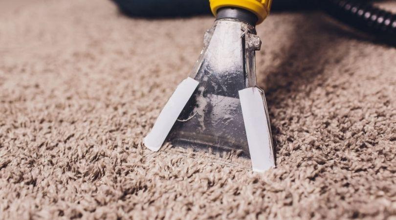 Professional Carpet Cleaning Experts San Antonio