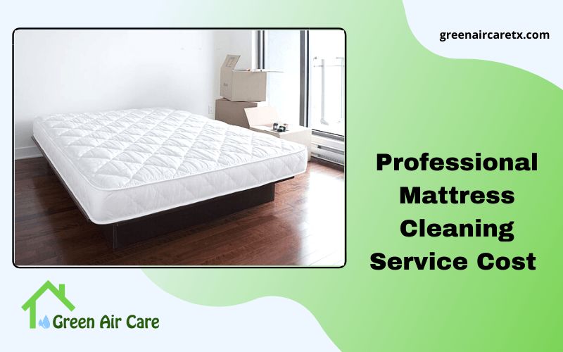Professional Mattress Cleaning Service Cost